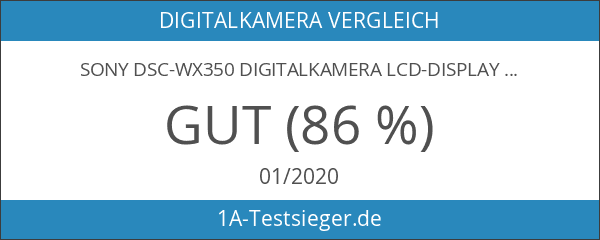 Sony DSC-WX350 Digitalkamera LCD-Display