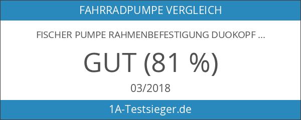 Fischer Pumpe Rahmenbefestigung Duokopf