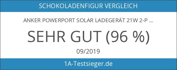 Anker PowerPort Solar Ladegerät 21W 2-Port