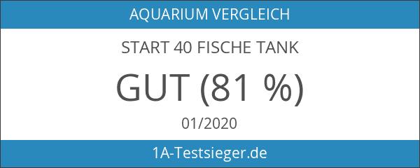 Start 40Fische Tank