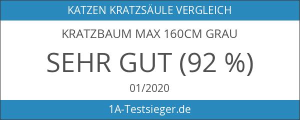 Kratzbaum MAX 160cm grau