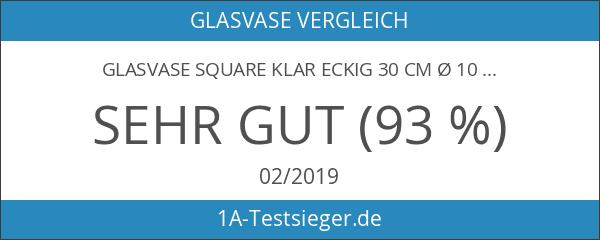 Glasvase Square klar eckig 30 cm Ø 10