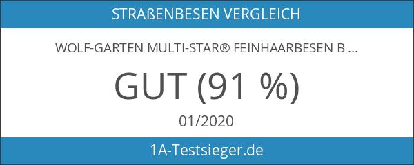 WOLF-Garten multi-star® Feinhaarbesen BF 40 M; 3905000